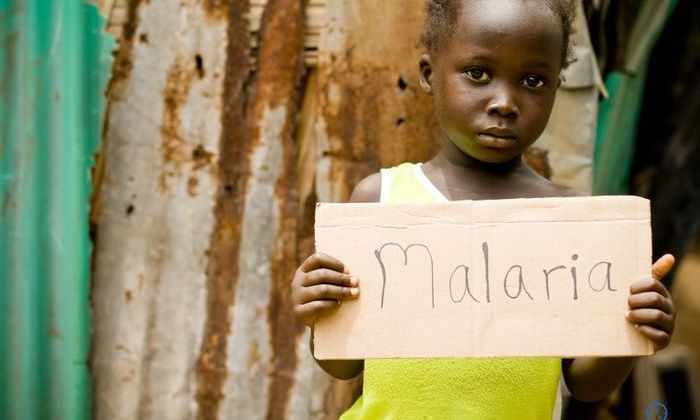 Однократный прием этого лекарства излечивает малярию у мышей