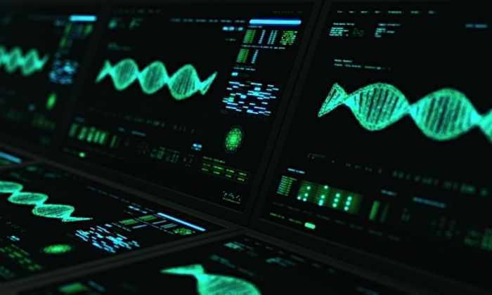 Поисковик для ДНК: как программисты помогают генетикам