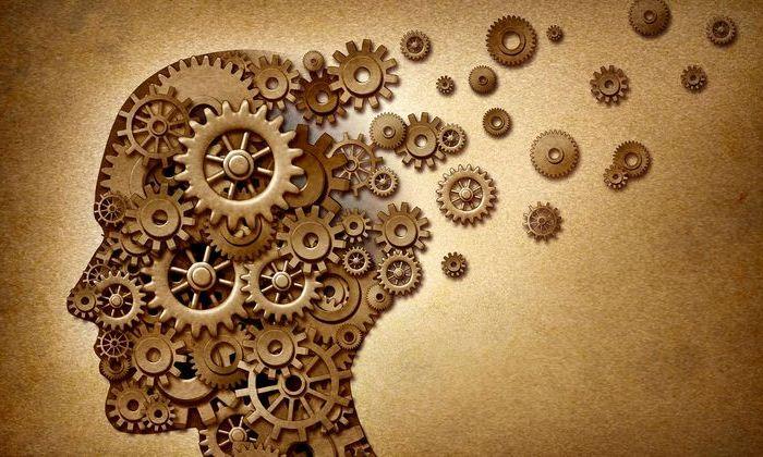 Зарядка для ума: топ приложений, которые заставят ваш мозг работать