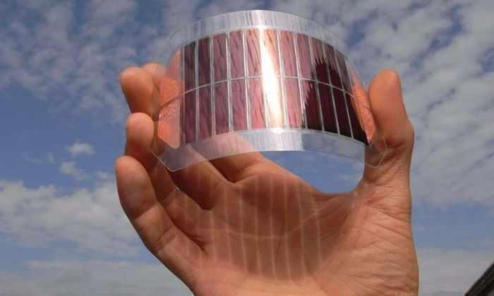 Квантовые солнечные батареи объяснили зеленый цвет растений