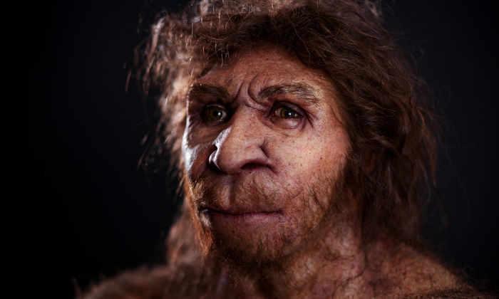 Хорошо сохранился: неандертальцы оказались гораздо старше