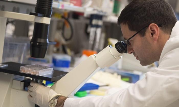 УченыеРФ протестировали лекарство отвсех видов рака