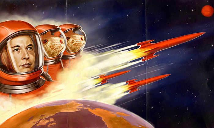Никогда не видели бегущего Илона Маска? Загляните за кулисы запуска Falcon-9