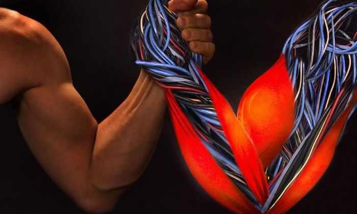 Разработан мягкий робот, имитирующий человеческие мышцы