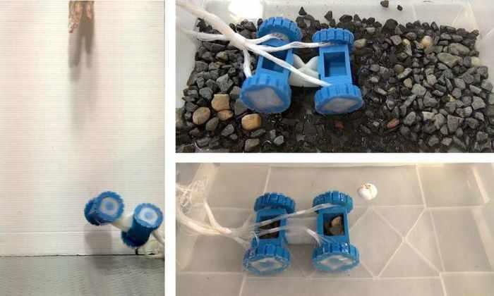 Ученые разработали мягкий двигатель для мягких роботов