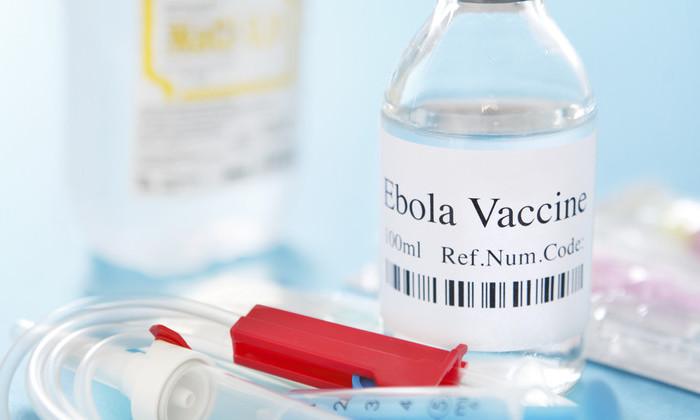 Антитела выжившего после Эболы помогут создать вакцину против вируса