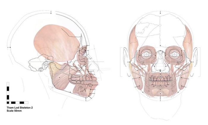 Реконструировано лицо женщины, жившей 13600 лет назад