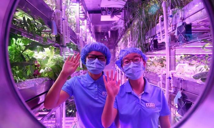 15a67a8fecd93545d303c41f2d210014 В Китае стартовал второй этап имитации лунной миссии