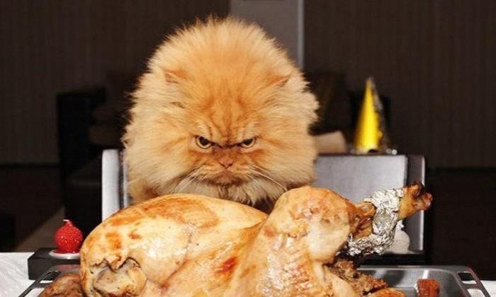 Мы злимся, когда голодные. Почему так и как этого избежать?