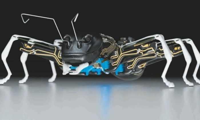 Роботы-муравьи способны успешно решать групповые задачи