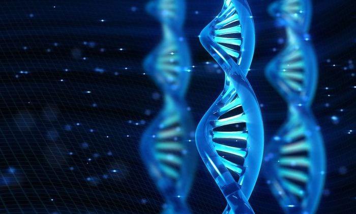 Новая форма жизни: разработаны первые в истории полусинтетические организмы