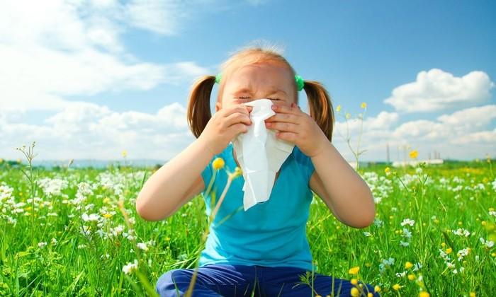 В Австралии нашли способ побороть аллергию