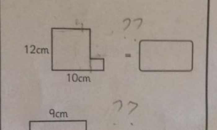 Школьную задачку не смогли решить десятки взрослых людей