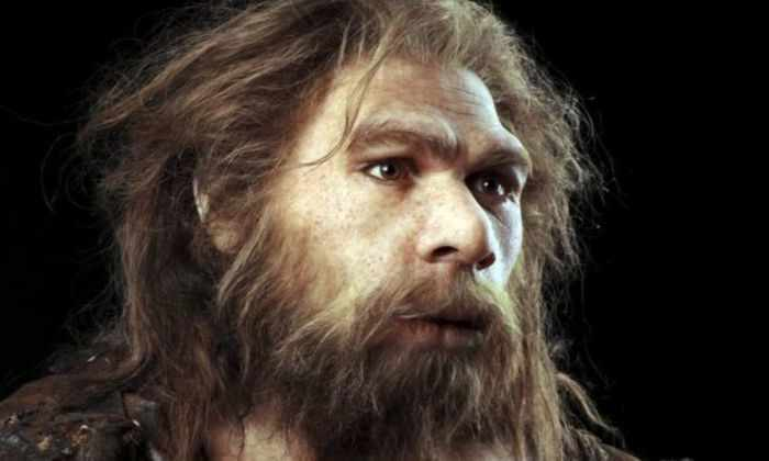 Неандертальцев могли погубить занесенные людьми из Африки болезни