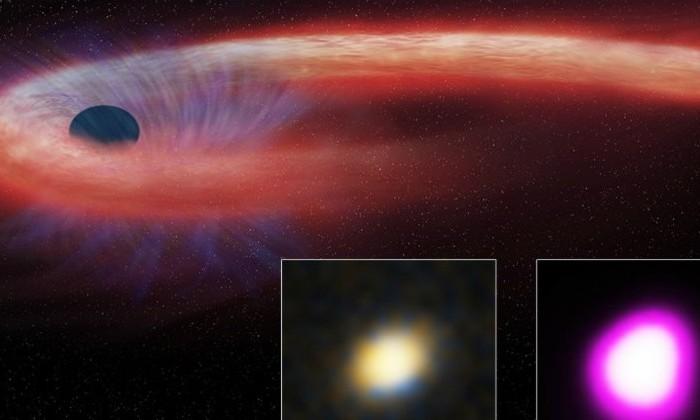 Обнаружена самая прожорливая черная дыра в истории астрономии