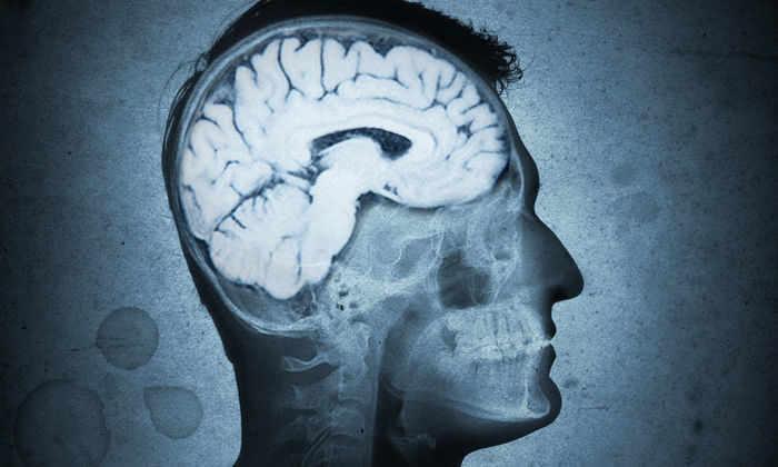 Внезапные вспышки гнева могут вызывать паразиты в мозгу
