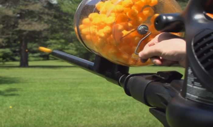 Видео: как сделать ружье, стреляющее сыром