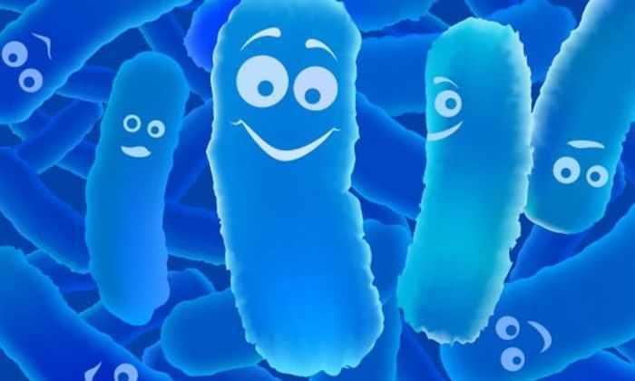 Бактерии превращают сточные воды в чистую воду и электричество