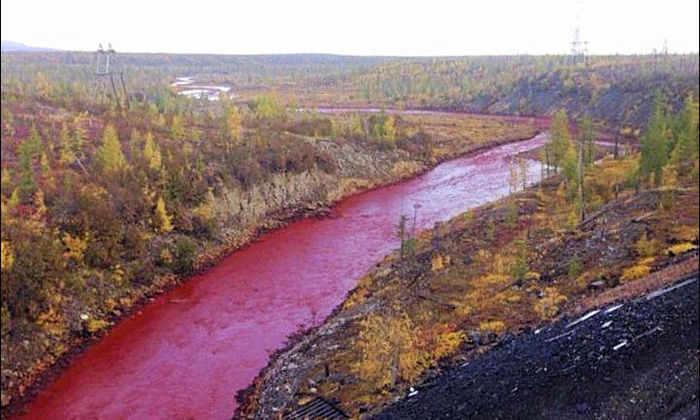 Росприроднадзор установит причину покраснения реки рядом с Норильском