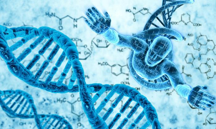 Новая теория: почти вся человеческая ДНК является бесполезной