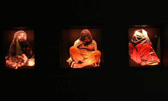 Кишечные бактерии 1000-летней мумии оказались устойчивы к антибиотикам