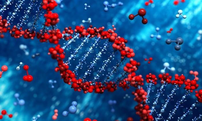 Разработан первый в мире управляемый переключатель ДНК
