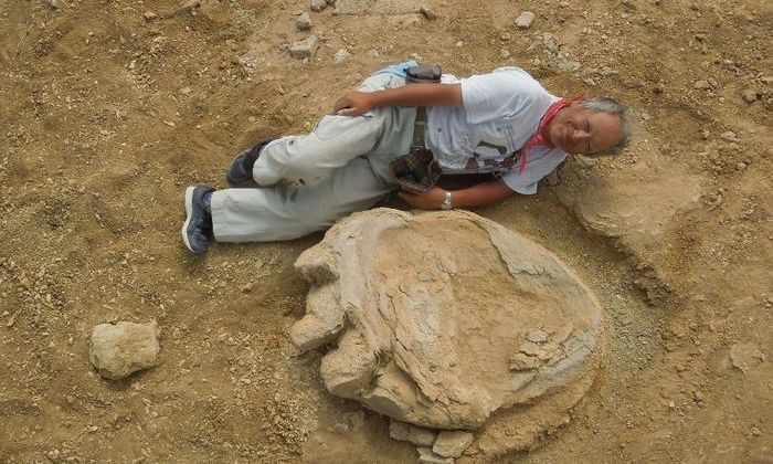 В пустыне Гоби нашли гигантские доисторические следы