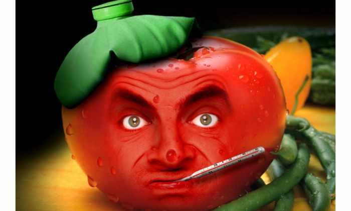 Ученые доказали, что помидоры не стоит хранить в холодильнике