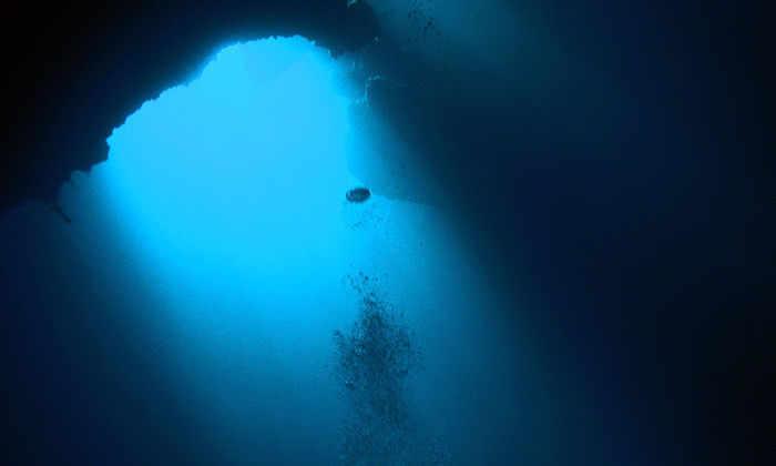 Найден источник устрашающего звука, исходящего из Марианской впадины