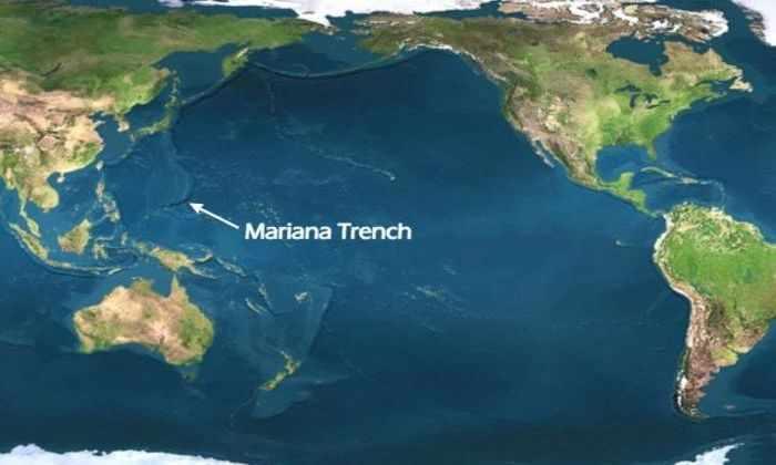 На Youtube появилась видеотрансляция из Марианской впадины