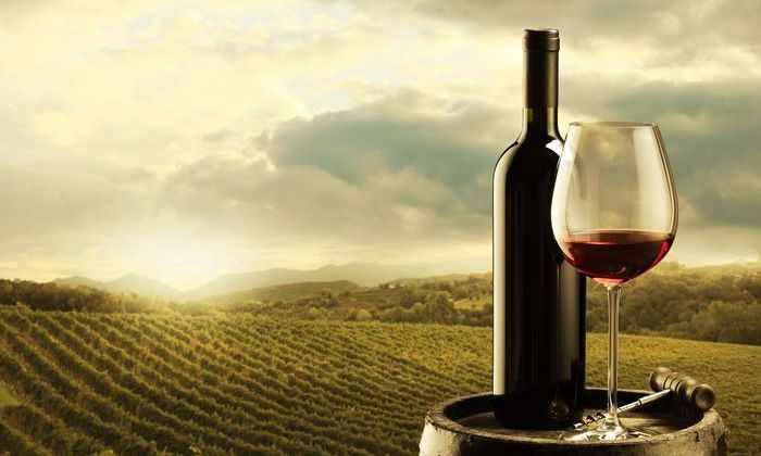 Глобальное потепление перестанет улучшать вкус вина