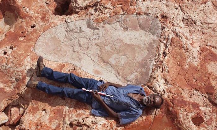 Крупнейшие следы динозавров нашли в Австралии