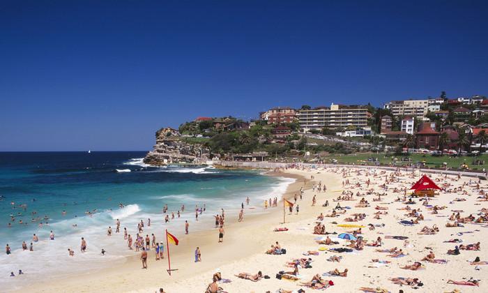 Неопознанные существа-«пираньи» атаковали подростка на австралийском пляже