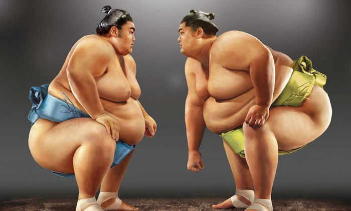 Борьба сумо у роботов сильно отличается от человеческой