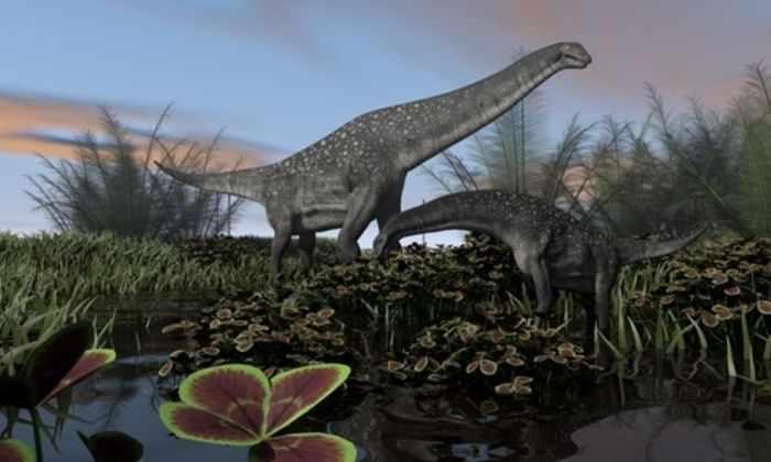 Палеонтологи рассказали о сверхбыстром росте динозавров