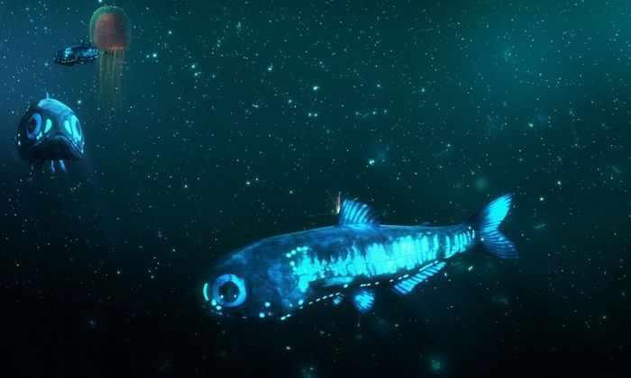 Установлен источник света, позволяющий выжить морским жителям в период полярной ночи