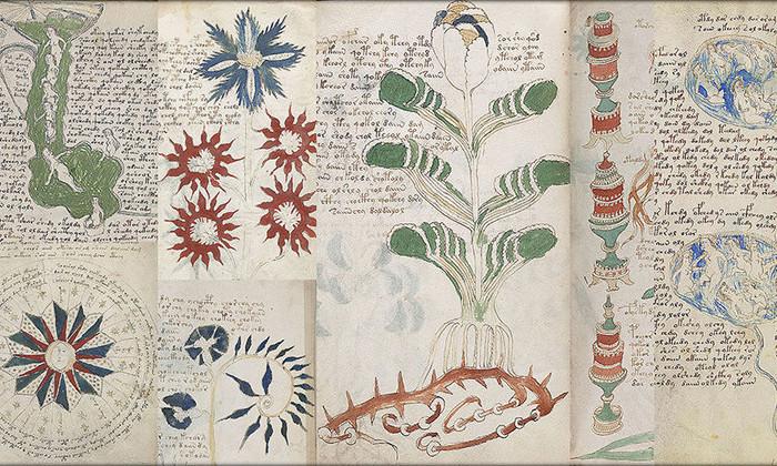 Страницы манускрипта Войнича