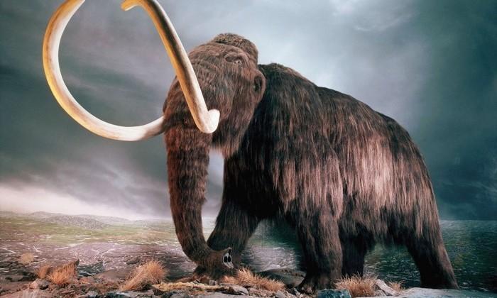 Причиной вымирания мамонтов назвали «мутационный взрыв»