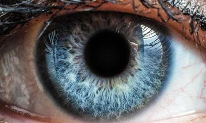 Ученые нашли способ вернуть зрение миллионам людей