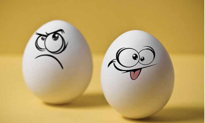 Яйцо падает с высоты 45 метров и не разбивается благодаря супер покрытию
