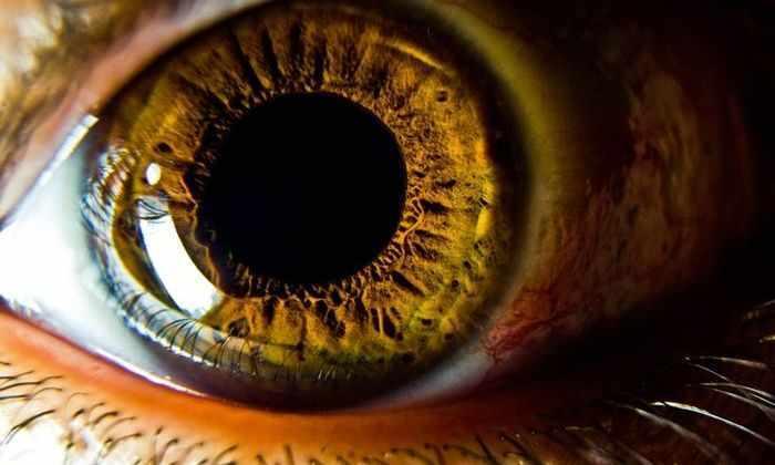 Впервые робот сделал операцию внутри глаза