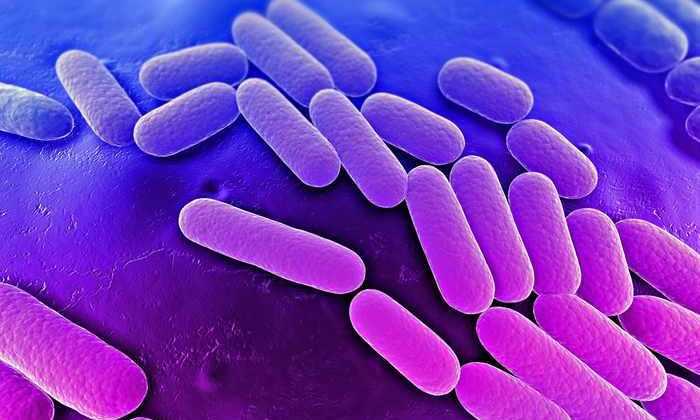 Американка умерла от инфекции, устойчивой ко всем современным антибиотикам. Кроме одного