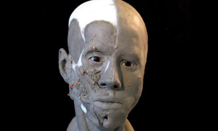 Шведский скульптор реконструировал лицо девушки, жившей 9000 лет назад