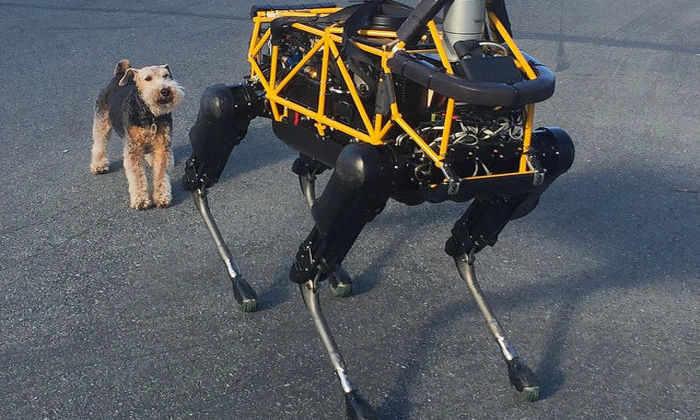 Spot и собака