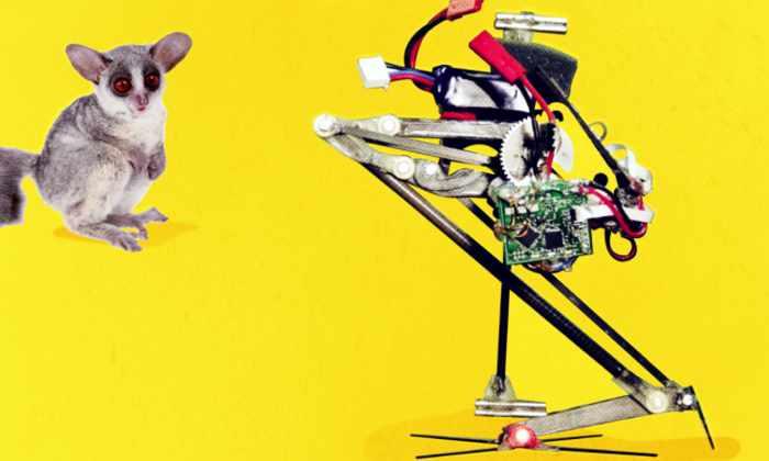 Разработан самый прыгучий робот в мире