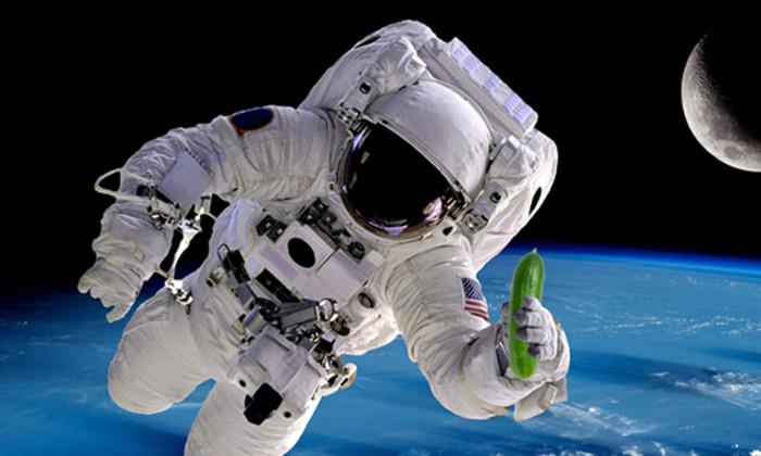 Космические огурцы – не дай себе засохнуть: овощи помогут найти воду в космосе