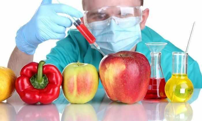 Правительство РФ запретило выращивать ГМО в стране