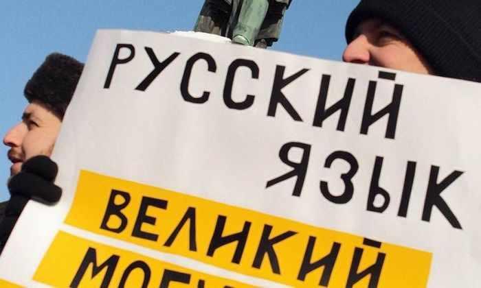 Яндекс проверил рунет на грамотность