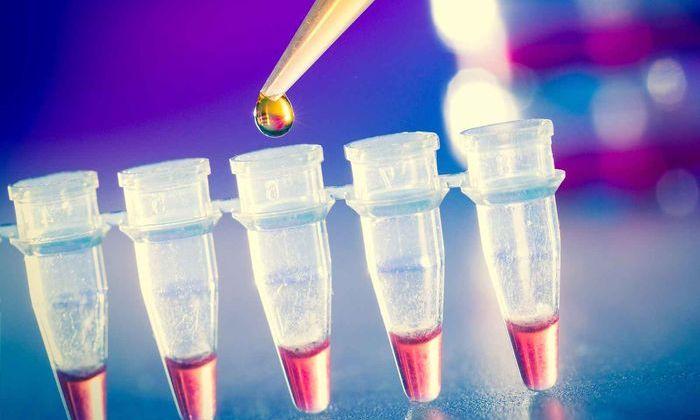 В Великобритании испытают искусственную порошкообразную кровь