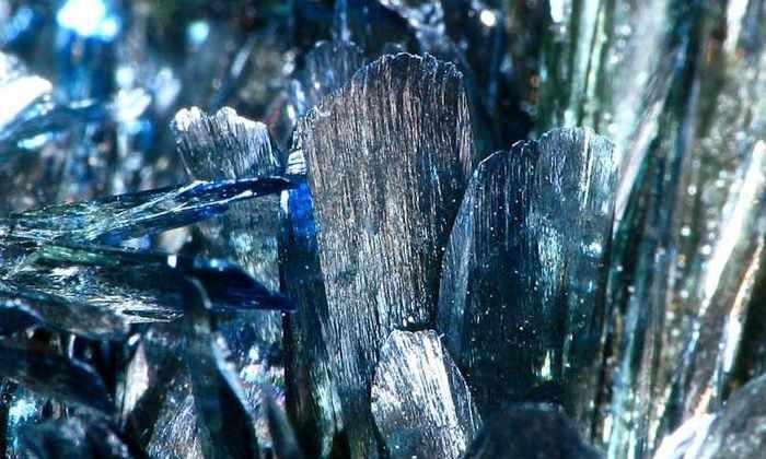Посинел не от холода: минерал, растущий на трупах, превращает их в синие кристаллы